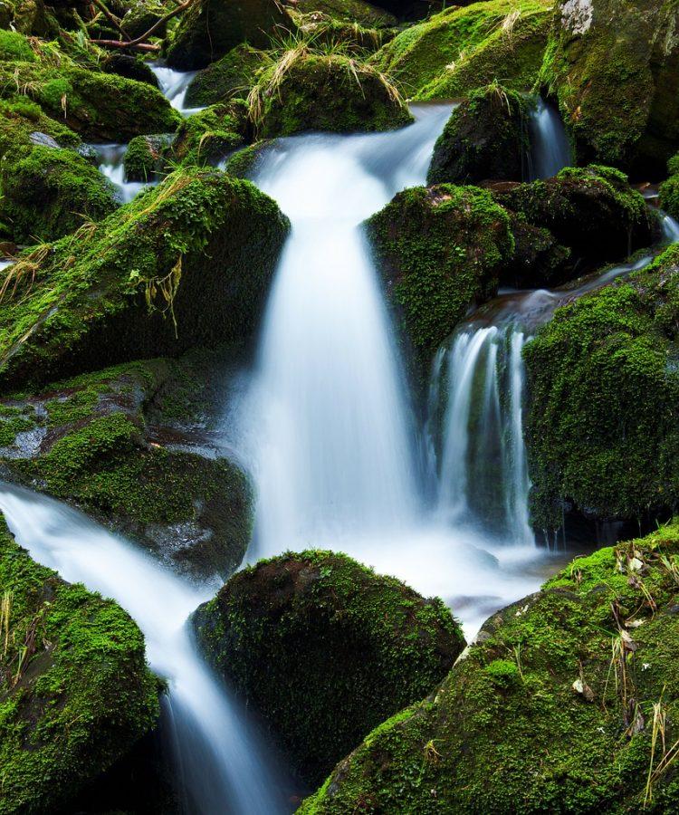 creek, falls, flow