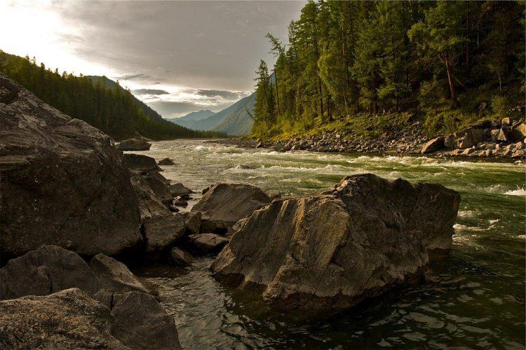 river, forest, rocks